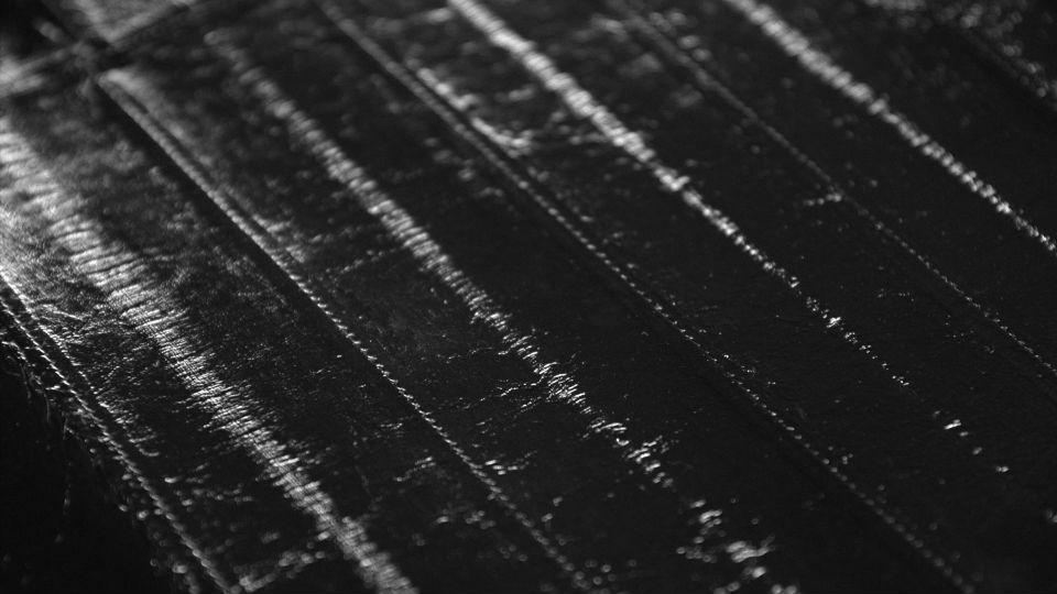 Paccapelo PellamI anguilla nera